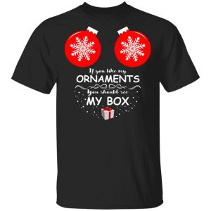 If You Like My Ornaments You Should See My Box Shirt